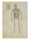 Liber notabilium Philippi septimi francorum regis, a libris Galieni extractus Gicleetryck
