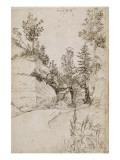 Paysage ; route bordée de rochers abrupts et d'arbres près de Nuremberg Giclée-Druck von Albrecht Dürer