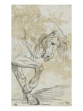 Avant-train d'un cheval Lámina giclée por Jacques-Louis David