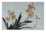 Orchidées orange Giclée-Druck von Katsushika Hokusai