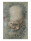 Old Bald Head and Bearded, Nearly Face, Looking Down Giclee Print by Federico Barocci