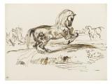 Cheval cabré dans un paysage et autres études de chevaux Reproduction procédé giclée par Eugene Delacroix
