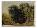 Ruines d'une arcade touffée d'herbes Giclée-Druck von Pierre Henri de Valenciennes