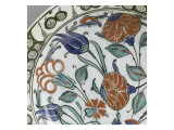 Plate with Flowering Stems and Foliage Green and Blue Giclee Print
