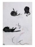 Feuille d'études de chat Giclée-tryk af Édouard Manet