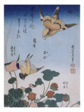 Hirondelle et pie sur fraisier et bégonia Giclée-Druck von Katsushika Hokusai