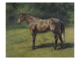 Etude de cheval gris au vert Giclee Print by Rosa Bonheur