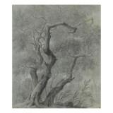 Etude d'arbres Giclée-Druck von Pierre Henri de Valenciennes