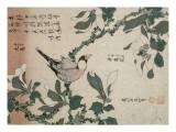 Passereau et magnolia Giclée-Druck von Katsushika Hokusai