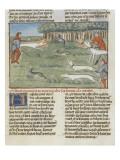 Le Livre de la chasse de Gaston Phébus : les lévriers coursent les lièvres Reproduction procédé giclée
