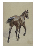 Etude de cheval Giclee Print by Adrien Emmanuel Marie