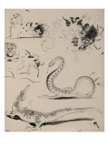 Sheet of Studies: Cat, Crocodile, Snake, Decorative Giclee Print by Eugene Delacroix