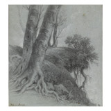Etude d&#39;arbres Gicl&#233;e-Druck von Pierre Henri de Valenciennes