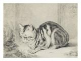Le chat couché Giclée-tryk