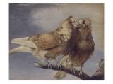 Deux pigeons Giclée-Druck von Joseph Marie Vien