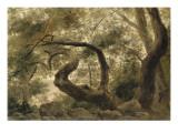 Sous-bois, arbres aux branches tortueuses Giclée-Druck von Pierre Henri de Valenciennes
