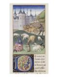 """Le Rustican ou """"Livre des proffitz champestres et ruraulx"""" par Pietro de' Crescenzi Giclee Print by du Boccace de Genève Maître"""