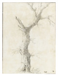 Tronc d&#39;arbre d&#233;pouill&#233; Gicl&#233;e-Druck von Pierre Henri de Valenciennes
