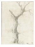 Tronc d'arbre dépouillé Giclée-Druck von Pierre Henri de Valenciennes