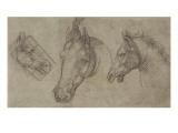 Trois têtes de chevaux Giclée-tryk af Leonardo da Vinci