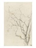 Branches d'arbre dépouillées Giclée-Druck von Pierre Henri de Valenciennes