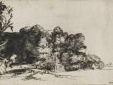 Le bouquet de bois Reproduction procédé giclée par  Rembrandt van Rijn