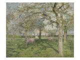 Le verger au printemps Impression giclée par Emile Claus