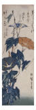 Volubilis Giclee Print by Ando Hiroshige