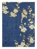 Bouvreuil et cerisier-pleureur Reproduction procédé giclée par Katsushika Hokusai