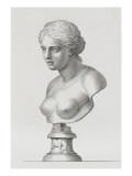 Tableau du Cabinet du Roi, statues et bustes antiques des Maisons Royales Tome II : planche 16 Lámina giclée por Etienne Baudet
