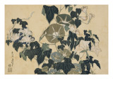 Volubilis et reinette Giclee Print by Katsushika Hokusai