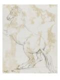 Album : cheval hennissant ; cheval cabré ; cheval allongé ; crâne de cheval Giclee Print by Jacques-Louis David