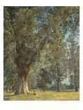 View from the Prater in Vienna (With Tree at Left) Giclee Print by Ferdinand Georg Waldmüller