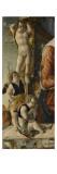 la Vierge à l'enfant entourés de huit anges Giclee Print by Marco Zoppo