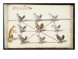 """Album ; Ballet  Fées  Forêts de Saint Germain ; """"Jeu du renard et  pou""""; huit figures Giclee Print by Daniel Rabel"""