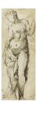 Torse de femme sans tête ni bras, vu de face : Vénus ; Homme nu debout, de dos, les jambes Giclee Print by Domenico Beccafumi