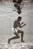 Ali - Underwater Photo