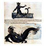 """Gesner, Manuscript """"Historiae Animalium"""", Book Ii: """"Quadrupedipus Oviparis"""" Giclee Print by Conrad Gesner"""
