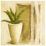 Aloe Art by Véronique Didier-Laurent