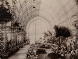 Paris, 1900 World Exhibition, The Huge Greenhouse of the City of Paris Photographic Print