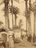 Arabic Village Along the Nile (Egypt) Photographic Print by Felix Bonfils