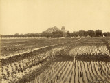Ricefield and Summer Palace in the Background (China) Photographic Print