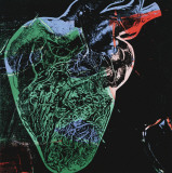 Human Heart, c.1979 (green) Affiches van Andy Warhol