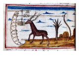 """Henry De Ferrieres, """"The Book of King Modus and Queen Ratio"""" St. Hubert""""S Stag Giclee Print by Henry de Ferrieres"""
