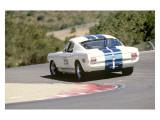 1965 Shelby GT350R Giclée-tryk af David Newhardt