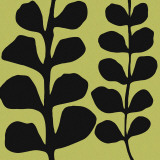 Black Fern on Green Poster by Denise Duplock