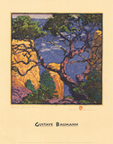 Pinon Grand Canyon Affiches par Gustave Baumann