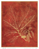 Golden Oak I Art by Sarah Elizabeth Chilton