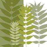 Garden Greens Posters af Erin Clark