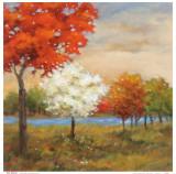 Four Seasons Prints by Adam Rogers